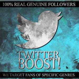 Twitter Boost Logo